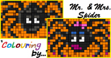 Colouring by Algebra - Mr. & Mrs. Spider BUNDLE (factorabl