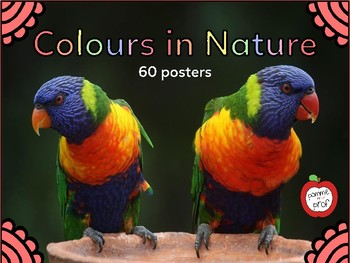 Colours in Nature (60 posters)