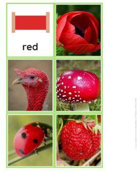 Colours in Nature Montessori Cards