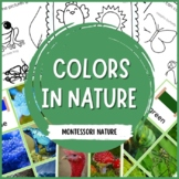 Colors in Nature Montessori Cards