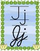 Combined Manuscript and Cursive Alphabet Posters - Frog Theme