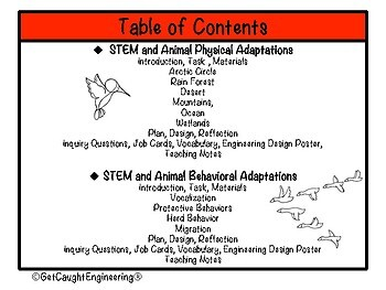 Combo STEM Packet: Physical & Behavioral Adaptations