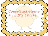 Come Back Home My Little Chicks