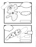 Comic Book Microbes - Interactive Notebook for Unicellular