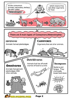Relationship between Organisms (i.e. Symbiosis, Predation, Etc) *Unit: Ecology