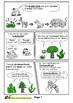 Standard-Based Comic: Symbiosis (Unit: Ecology)