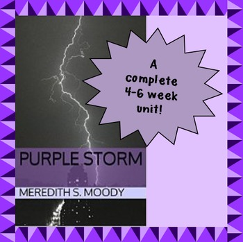 Coming of Age Unit for Young Adult Novel Purple Storm