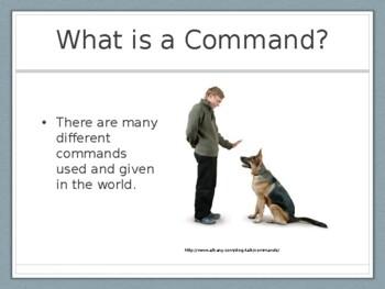 Command Central Presentation