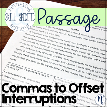 Commas to Set Off Interruptions: Skill-Specific Revising and Editing Passage