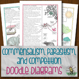 Commensalism Parasitism and Competition Doodle Diagrams