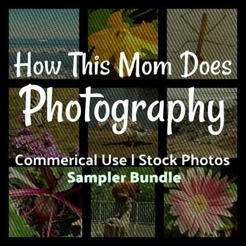 Commerical Use   Stock Photos - Sampler Bundle