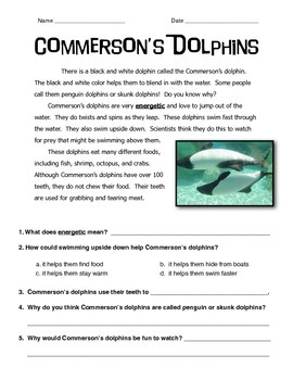 Commerson's Dolphins Informational Text