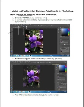 Common Adjustments in Photoshop (A Visual Guide For Students)