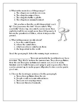 Common Assessments - Main Idea Gr. 3