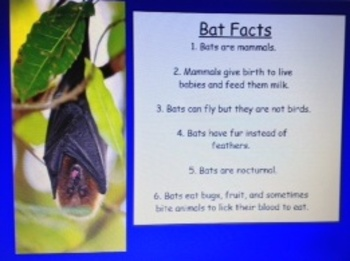 2nd Grade Common Core 2.W.2 Explanatory & Informative Text SMARTBoard