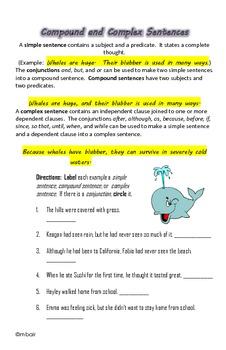 Common Core 6th Grade Homework Packet #10