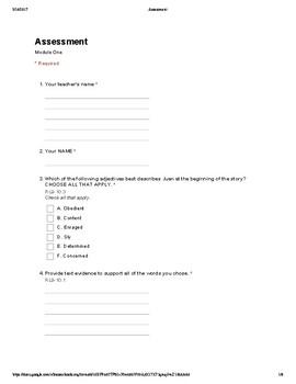 Common Core 9th and 10th Grade English Assessment: Literature (3A)