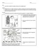 Scientific Revolution Worksheet: Common Core Learning Standards (CCLS)