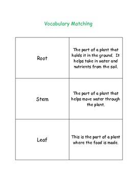 Common Core Aligned Unit: Plants (grades 1-3)