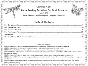 Common Core Close Reading Activities: Quick As A Cricket