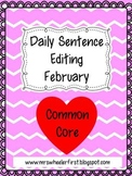 First Grade Sentence Editing: February
