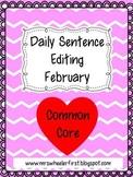 First Grade Sentence Editing: February