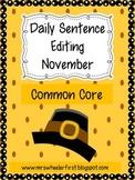First Grade Sentence Editing: November