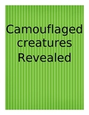 Camouflage Science Literacy Lesson Plan