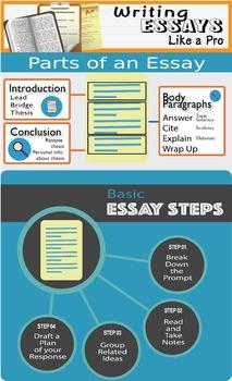 Common Core Essay Infographic