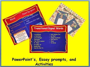 Common Core Expository Writing Bundle