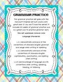Common Core Grammar Practice