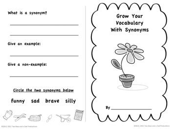 Synonyms Mini-Book
