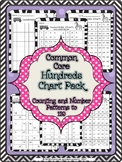 Common Core Hundreds Chart Activity Pack