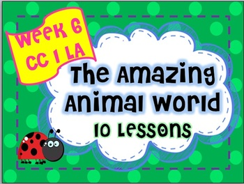 Amazing Animal World Week 6 Lesson Plans