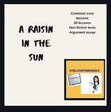 Common Core Lessons - A Raisin In The Sun