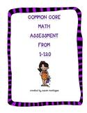 Common Core Math Assessment 1-120