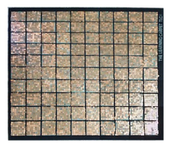 Common Core Math Model: Penny Carpet
