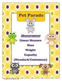 Common Core Measurement Unit for Centers