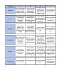 Common Core Multimedia Project Rubric