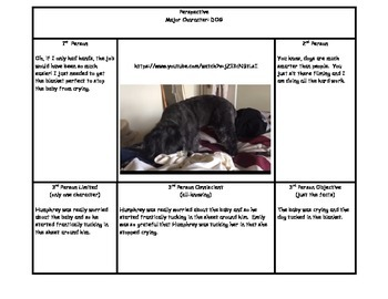 Common Core RL.5.6- Point of View Activity