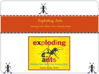 Common Core Reading Street Exploding Ants