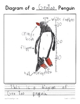 Common Core Research & Informative/Explanatory Writing Project (Topic: Penguins)