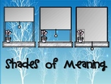 """Common Core """"Shades of Meaning"""" Unit - Winter Theme"""
