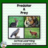 Science & Language Arts:  Predator & Prey Game