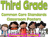 Common Core Third Grade Posters - Editable- (Melonheadz Edition)