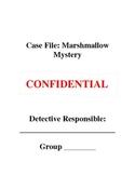 Common Core Volume Activity: The Great Marshmallow Mystery