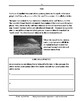 Common Core Worksheets: Reading Paired Passages, Daily Test Prep, Grade 5