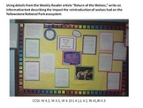 Common Core Writing Using Informational Text ~ Return of t