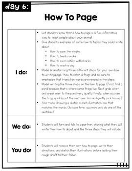 First Grade Writer's Workshop units