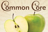 "Common Core aligned ELA ""Performance Task"""